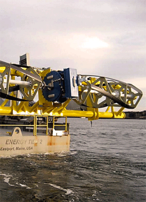 International Collaboration Studies Effects of Marine Renewable Energy Devices