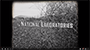 National Labs: Your Next BFF?